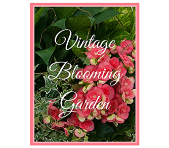 Vintage Blooming Garden in Dana Point CA, Browne's Flowers