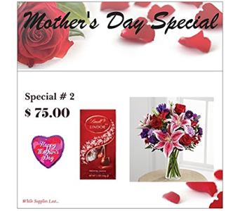 Special 2 in Fairfax VA, Rose Florist