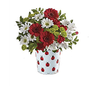 Christine's Ladybug Bouquet in Columbus OH, OSUFLOWERS .COM