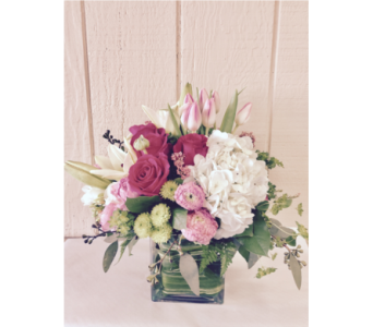 Shine her day in Lake Zurich IL, Lake Zurich Florist