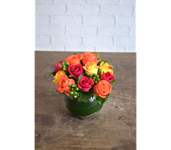 Bold Brights in Cary NC, Cary Florist