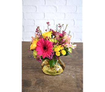 Harmony in Raleigh NC, North Raleigh Florist