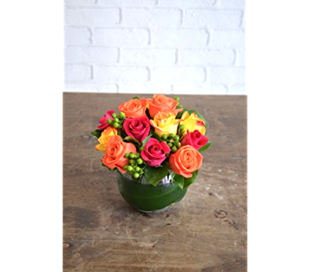Bold Brights in Raleigh NC, North Raleigh Florist
