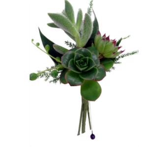 Succulent Boutonniere  in Detroit and St. Clair Shores MI, Conner Park Florist