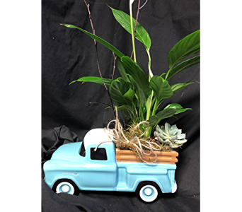 Father's Day Truck in Kingwood TX, Flowers of Kingwood, Inc.