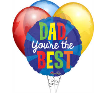 Father's Day Balloon Bouquet in Oviedo FL, Oviedo Florist