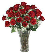 Red Roses 3 DZ in Nashville TN, Emma's Flowers & Gifts, Inc.