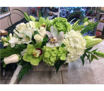 Custom in Toronto ON, Verdi Florist