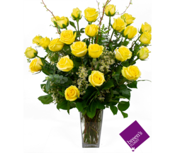 2 Dozen Yellow Roses in Houston TX, Breen's Clear Lake Flowers