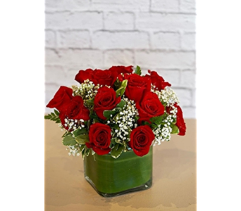 Contempo Rose Cube in Raleigh NC, North Raleigh Florist