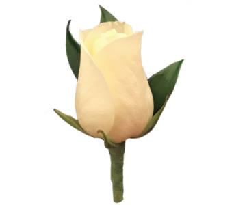 White Rose Boutonniere in Stuart FL, Harbour Bay Florist