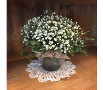Baby's Breath In Hobnail Glass  in Mount Kisco NY, Hollywood Flower Shop