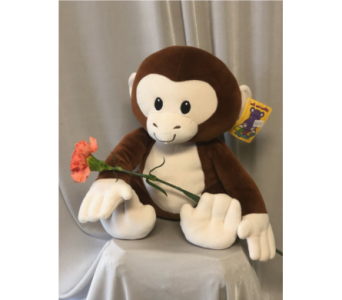 Monkey Plush in Elyria OH, Botamer Florist & More