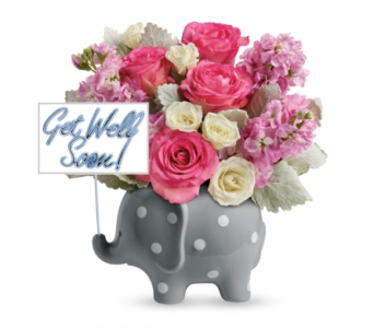 Get Well Elephant Girl Bqt in Columbus OH, OSUFLOWERS .COM