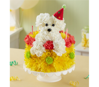 Birthday Wishes Flower CakeTM Pupcake In Bradenton FL Ms Scarletts Flowers Gifts