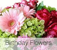 Birthday Designers Choice in Nashville TN, Emma's Flowers & Gifts, Inc.