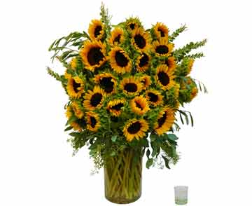 Sunflower Wow in Santa Monica CA, Edelweiss Flower Boutique