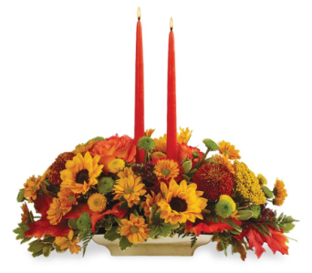 November Class-Cadillac in Big Rapids MI, Patterson's Flowers, Inc.