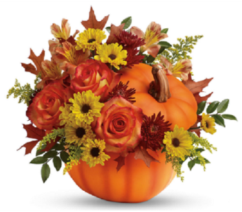 Festive Fall Pumpkin in Big Rapids MI, Patterson's Flowers, Inc.
