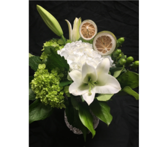 Citrus Heights in Needham MA, Needham Florist