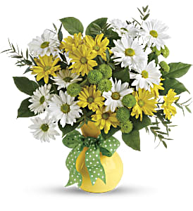 Teleflora's Daisies And Dots Bouquet in Alliston, New Tecumseth ON, Bern's Flowers & Gifts