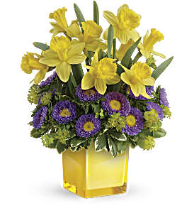 Teleflora's Playful Springtime Daffodil Bouquet in Richmond BC, Touch of Flowers
