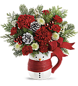 Send a Hug Snowman Mug Bouquet by Teleflora in Los Angeles CA, RTI Tech Lab