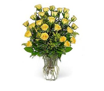 Stein Two Dozen Yellow Roses in Burlington NJ, Stein Your Florist