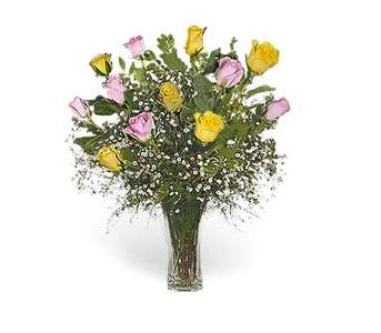 Stein Dozen Pink & Yellow Roses in Burlington NJ, Stein Your Florist