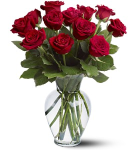 12 Red Roses in Modesto, Riverbank & Salida CA, Rose Garden Florist