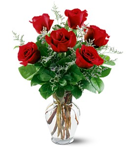 6 Red Roses in Oshkosh WI, Flowers & Leaves LLC