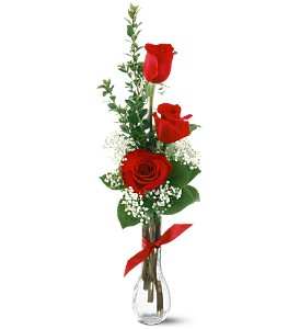 3 Red Roses in Mount Dora FL, Claudia's Pearl Florist