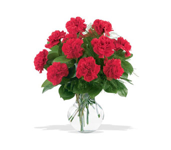 12 Red Carnations in Bellmore NY, Petite Florist
