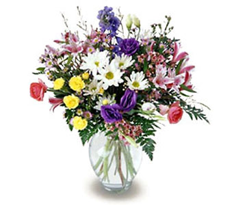 FTD Beloved Bouquet in Cohasset MA, ExoticFlowers.biz