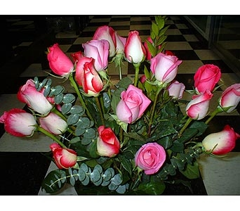 24 Assorted Pink Roses in Dallas TX, Z's Florist