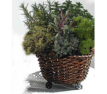 Herb Basket in Dorchester MA, Cedar Grove Gardens