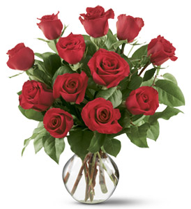 12 Red Roses in Gadsden AL, Ideal Flower Shop