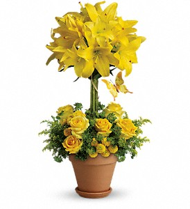 Yellow Fellow in Broomall PA, Leary's Florist