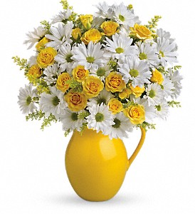 Teleflora's Sunny Day Pitcher of Daisies in Austintown OH, Crystal Vase Florist