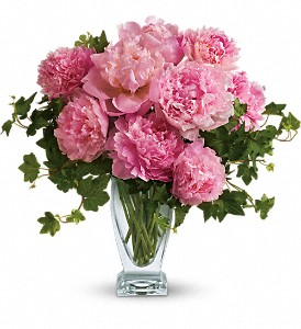 Teleflora's Perfect Peonies in Concord NC, Pots Of Luck Florist