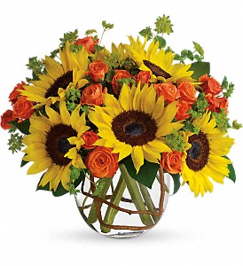 Sunny Sunflowers in Northport NY, The Flower Basket