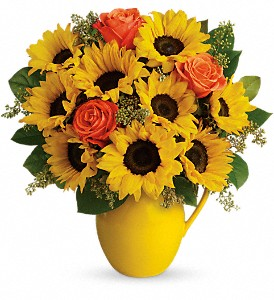Teleflora's Sunny Day Pitcher of Sunflowers in Hollywood FL, Flowers By Judith