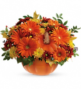 Teleflora's Country Pumpkin in Evansville IN, Cottage Florist & Gifts