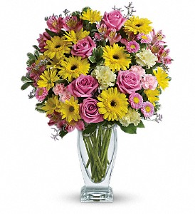 Teleflora's Dazzling Day Bouquet in Big Rapids, Cadillac, Reed City and Canadian Lakes MI, Patterson's Flowers, Inc.