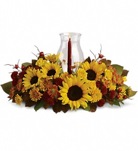 Sunflower Centerpiece in Fort Worth TX, TCU Florist