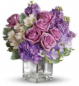Sweet as Sugar by Teleflora in West Chester OH, Petals & Things Florist