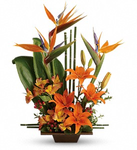 Teleflora's Exotic Grace in Amherst NY, The Trillium's Courtyard Florist