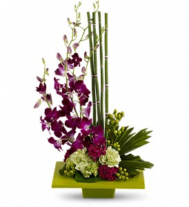 Zen Artistry in Washington DC, N Time Floral Design