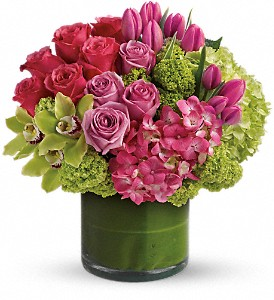 New Sensations in Kelowna BC, Burnetts Florist & Gifts
