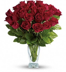 Teleflora's Rose Classique - Dozen Red Roses in Fairfax VA, Greensleeves Florist